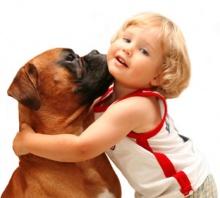 Когда ребенок просит собаку