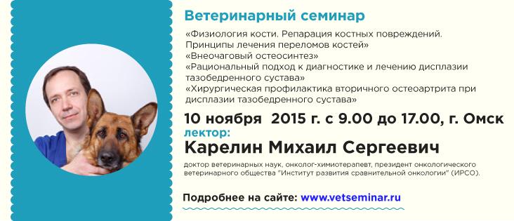 Семинар для ветеринарных специалистов по хирургии мелких домашних животных в Омске 10 ноября 2015 года