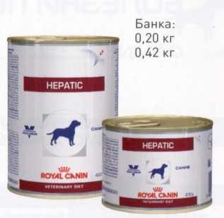 hepatic