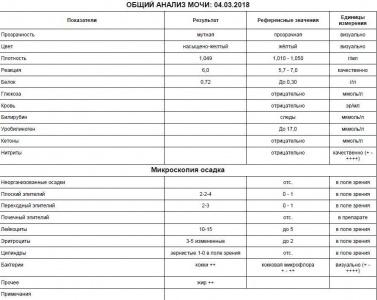 2. analiz mochi 04 marta