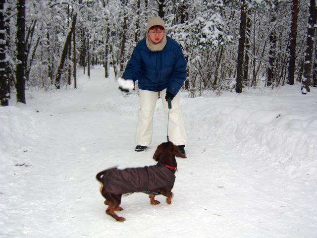 Одежда для собак зенит